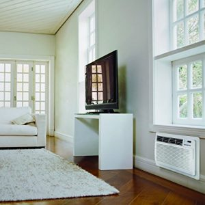LG – LT0816CER 8,000 BTU Through-The-Wall Air Conditioner W Heater – Each