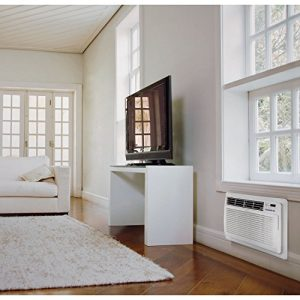 LG – LT1236CER 11,500 BTU 230V Through-the-Wall Air Conditioner with Remote Control – Each